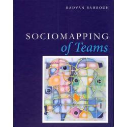Sociomapping of Teams